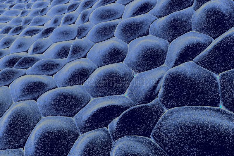 Layer of human cells royalty free illustration