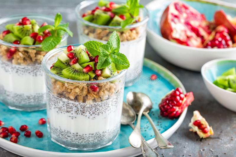 Layered chia pudding parfait with kiwi fruit, pomegranate, granola and yogurt stock photography