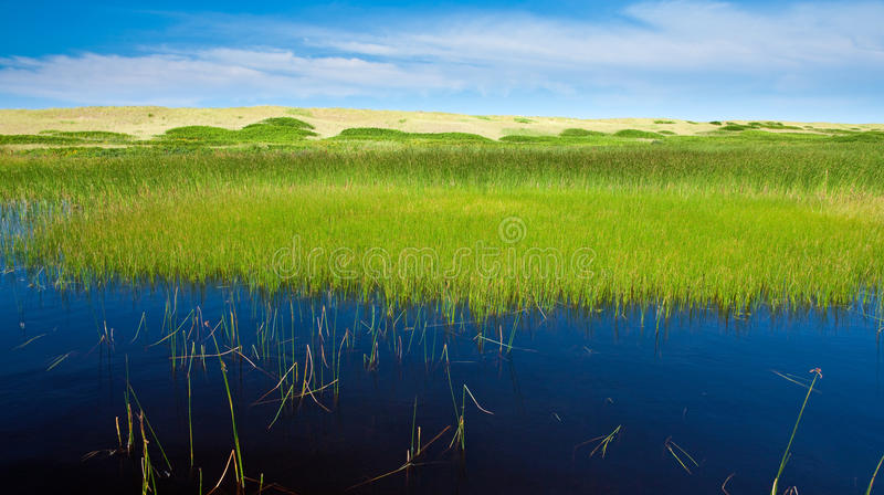 Download Layered Landscape Royalty Free Stock Images - Image: 12572959
