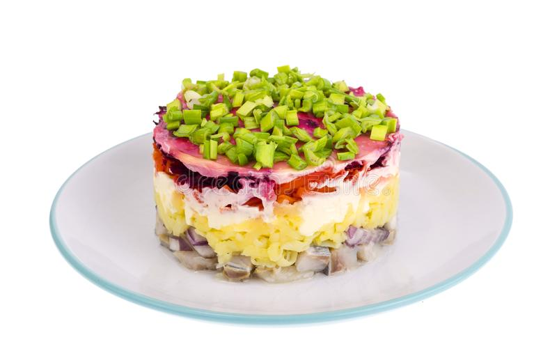 Layered salad with vegetables and herring. Studio Photo royalty free stock photo