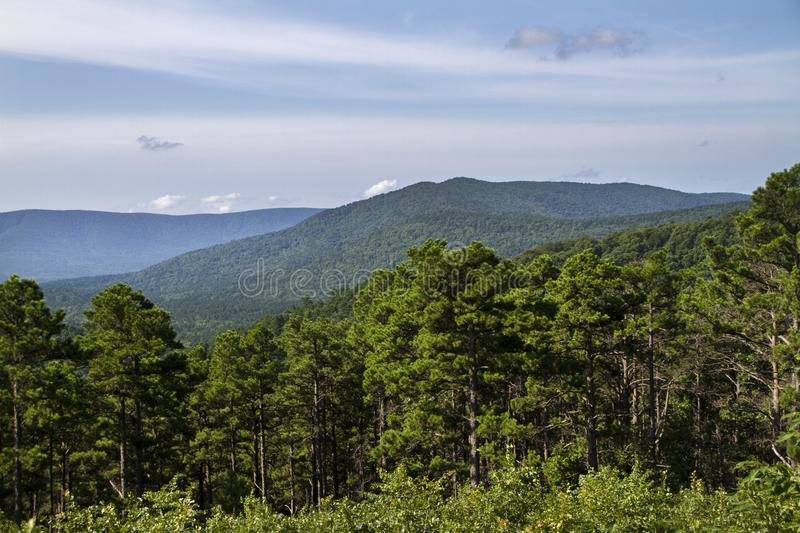 Scenic vista of mountains with stately pines. Layers of mountains and clouds on the Talimena National Scenic Byway in eastern Oklahoma. The Oauchita Mountain royalty free stock images