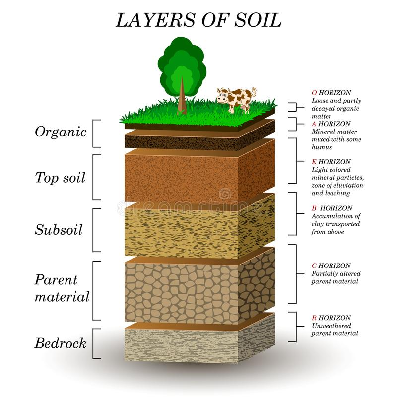 Layers of soil education diagram mineral particles sand for What are the different layers of soil