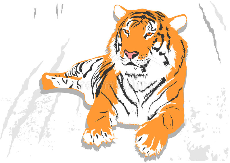 Download Laying tiger stock vector. Image of danger, laying, grace - 4858575
