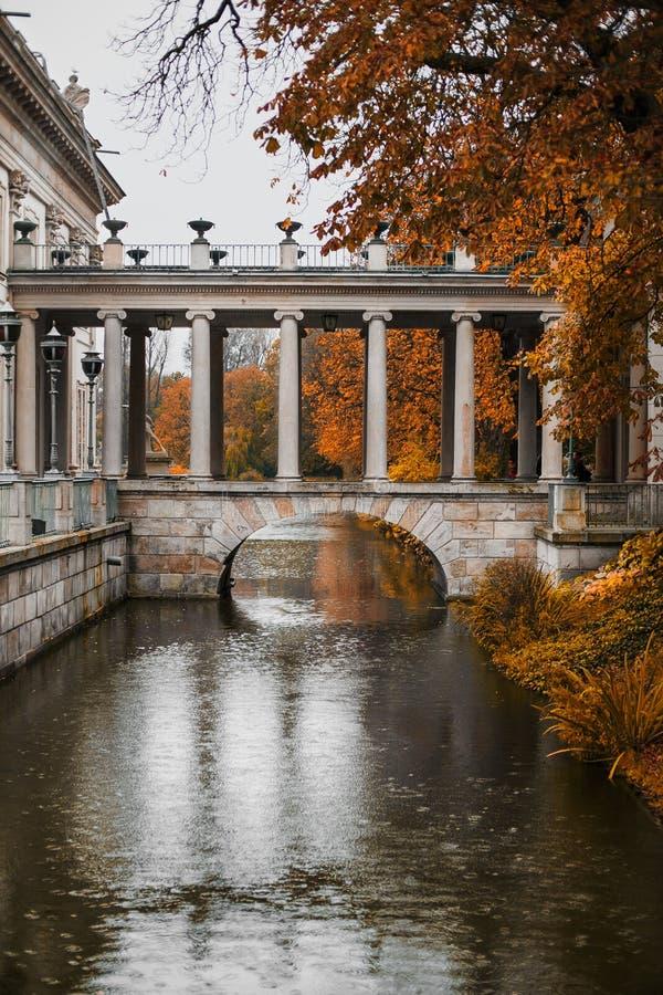 Lazienki公园华沙波兰 免版税库存图片