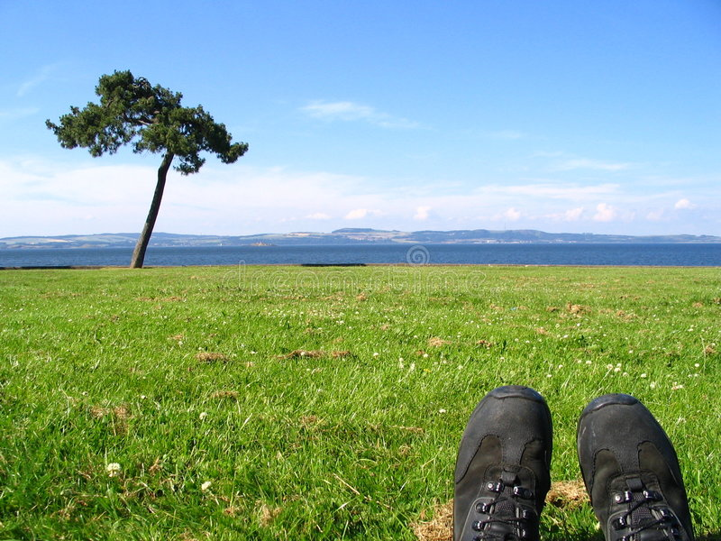 Lazing. On a sunny afternoon - feet in shot, tree in background royalty free stock images