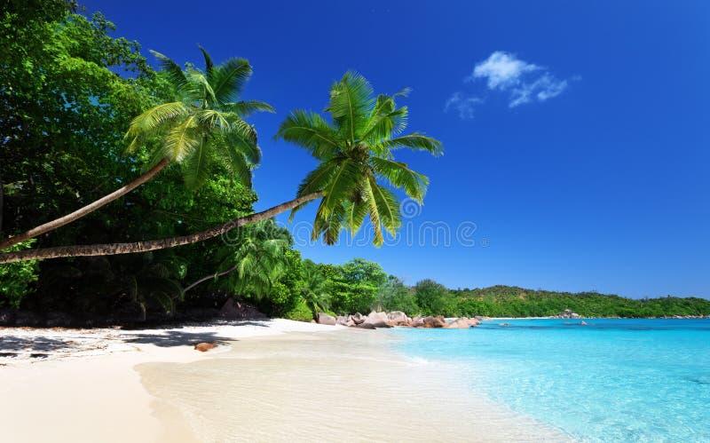 Lazio van Anse strand bij eiland Praslin stock foto