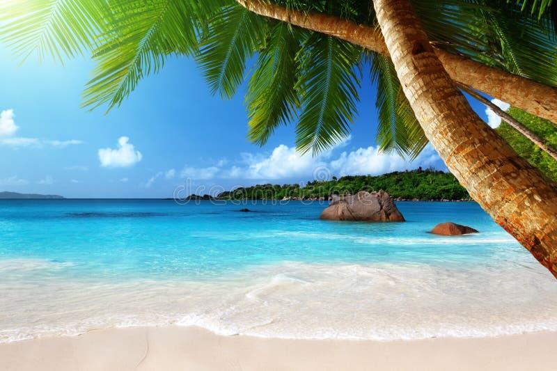 Lazio van Anse strand bij eiland Praslin royalty-vrije stock foto's