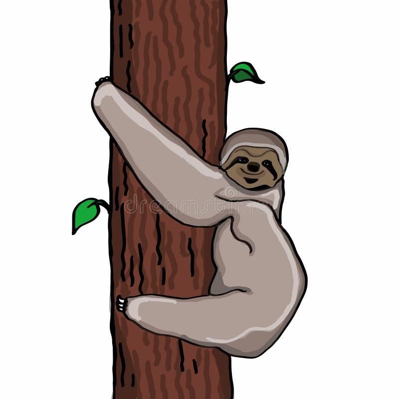 Lazy animal cartoon illustration. And white background vector illustration