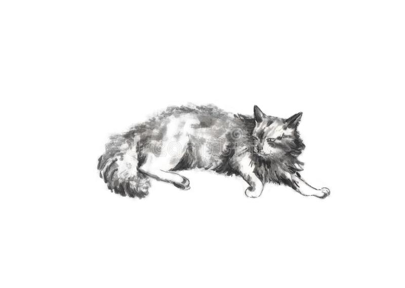 Lazy cat Japanese style original sumi-e ink painting. Great for greeting cards or texture design vector illustration
