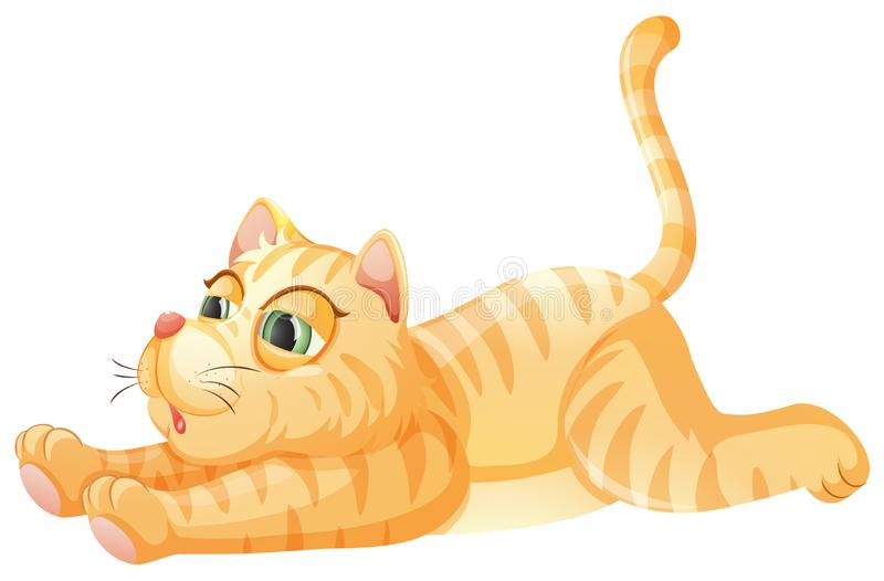 A lazy cat on whiye background. Illustration vector illustration
