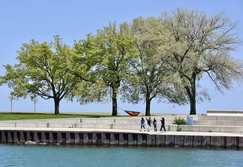 A Lazy Day On The Lakefront. This is a Spring picture of a lazy day on the Lake Michigan lakefront featuring spring leaves on the trees, a strung hammock, and stock photography