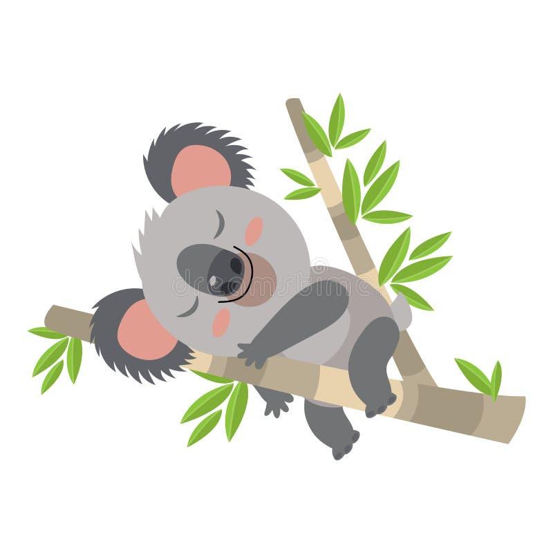 Lazy Koala Sleeping On A Branch Cartoon Vector Illustration. Animal Of Australia. Vector Illustration Of A Sleeping Koala. Baby Bear Koala, On A White vector illustration