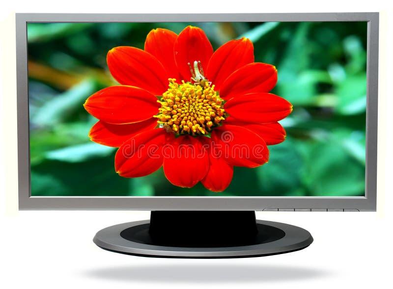 lcd-television arkivfoton
