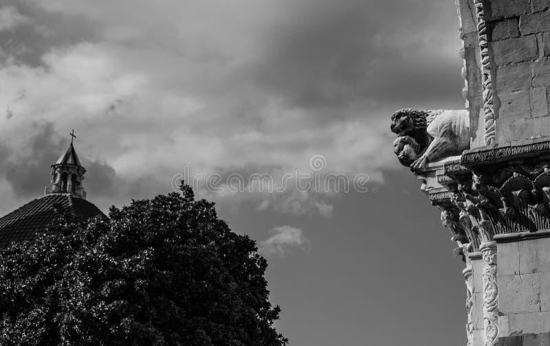 Leão da catedral de Lucca imagem de stock