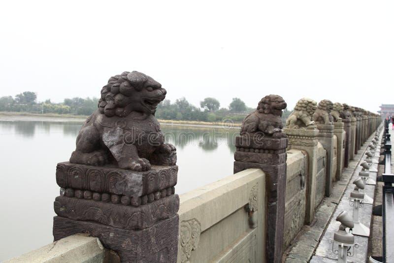 Leão de pedra vívido fotografia de stock