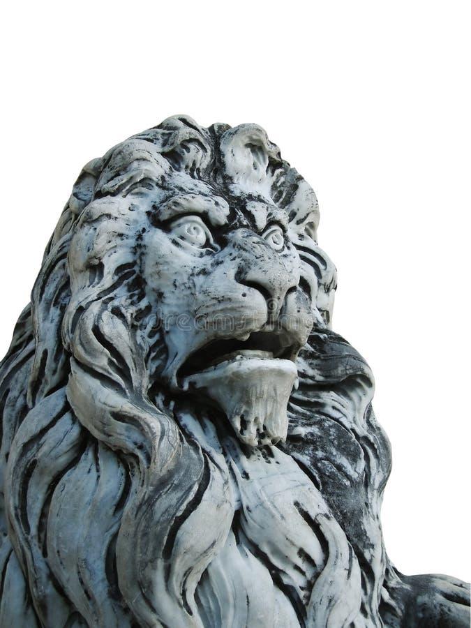 Leão de Peles fotos de stock royalty free
