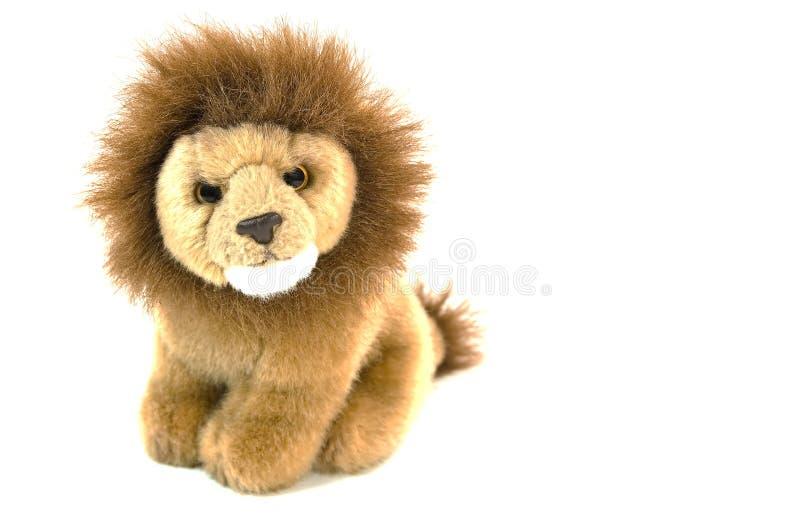 Leão do luxuoso fotografia de stock royalty free