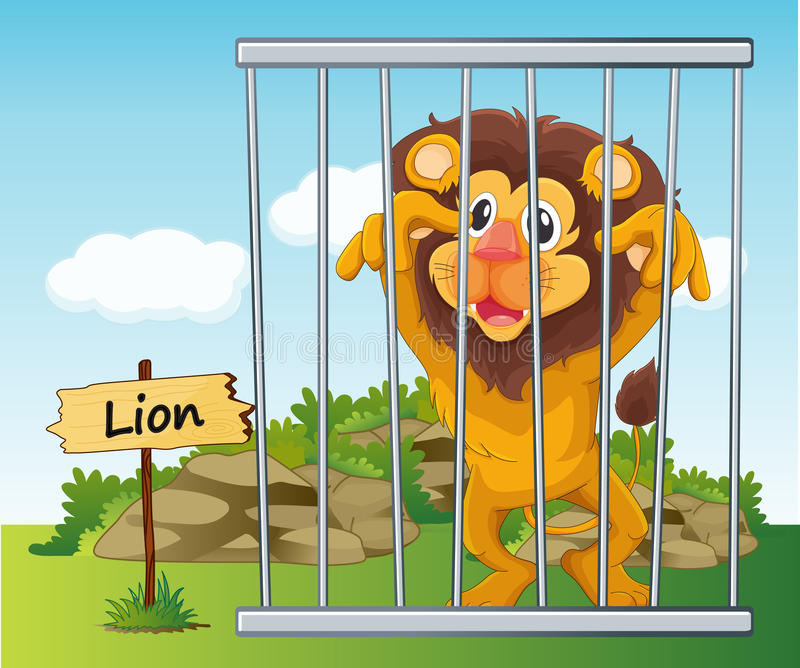 Leão na gaiola ilustração stock