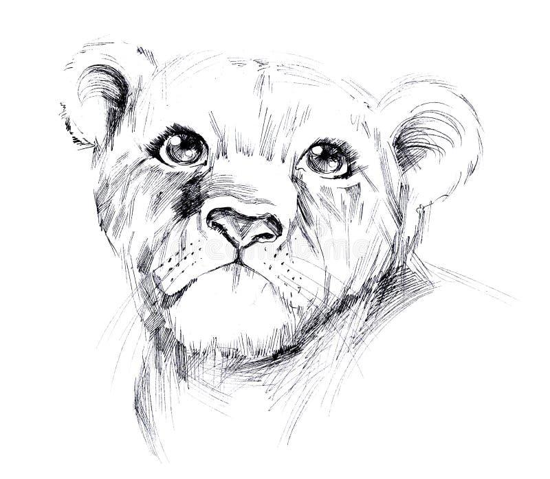 Leão novo ilustração royalty free