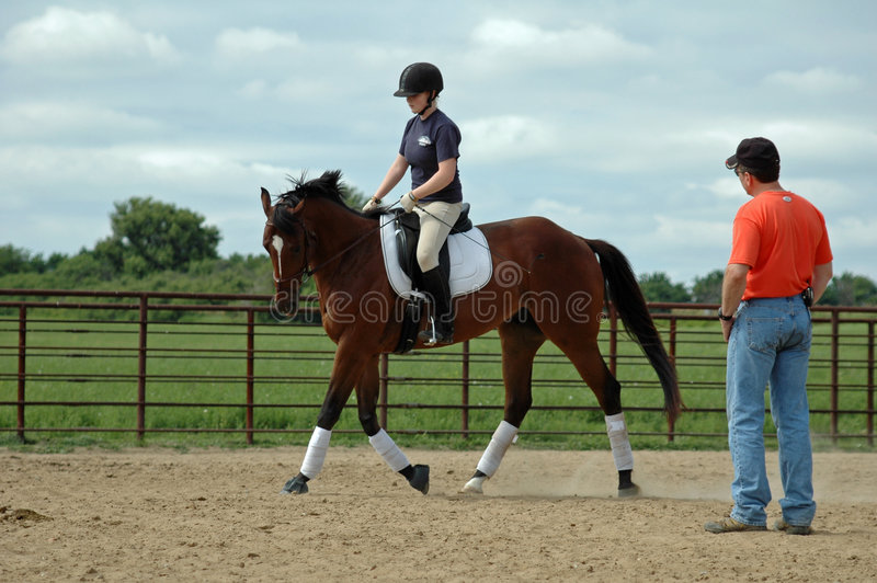 Leçon d'équitation photo libre de droits