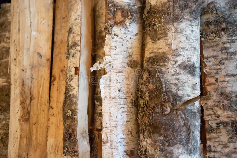 Leña apilada del abedul Leña para las FO preparadas invierno imagen de archivo
