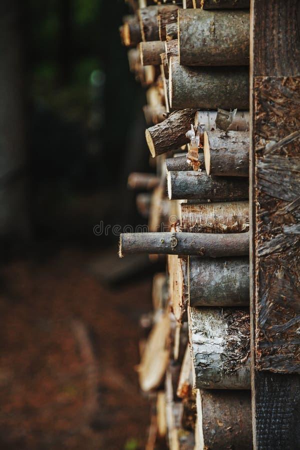 Leña apilada para secarse, preparado para el invierno foto de archivo libre de regalías