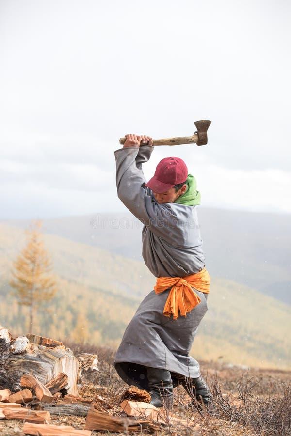 Leña de disminución del hombre mongol joven imagenes de archivo