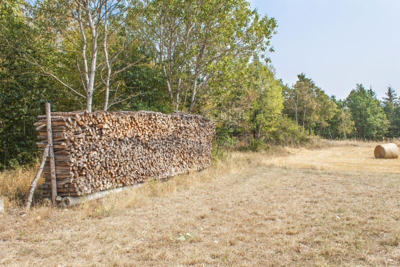 Leña lista Diversas clases de registros de madera apilados encima de uno a Pila de madera, leña, fondo foto de archivo libre de regalías