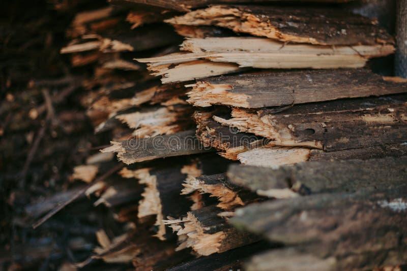 Leña, para el fuego, apilada en una pila plana Leña de la pared imagenes de archivo