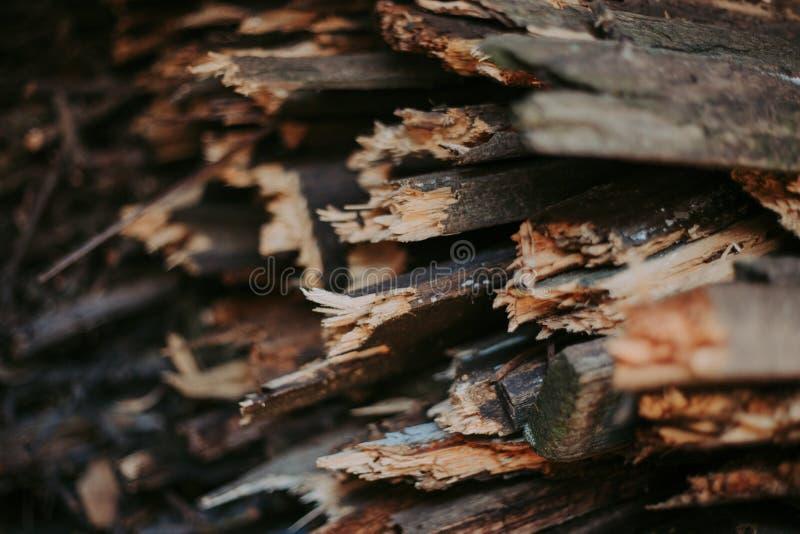 Leña, para el fuego, apilada en una pila plana Leña de la pared fotografía de archivo libre de regalías