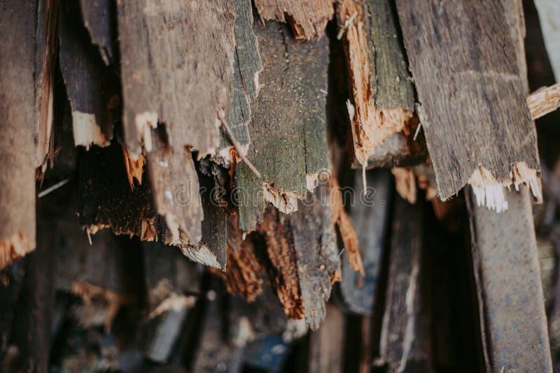 Leña, para el fuego, apilada en una pila plana Leña de la pared fotos de archivo libres de regalías