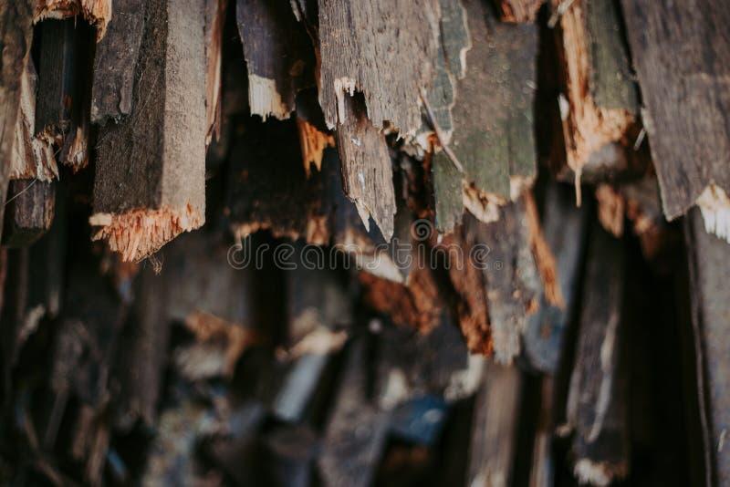 Leña, para el fuego, apilada en una pila plana Leña de la pared foto de archivo libre de regalías