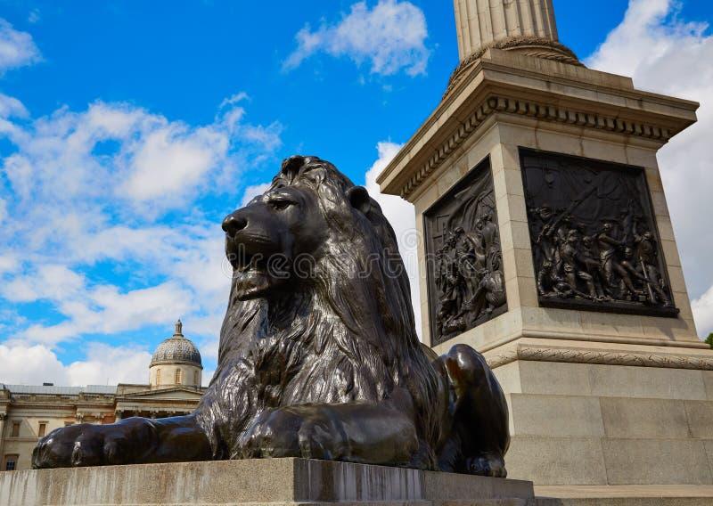 León de Londres Trafalgar Square en Reino Unido imágenes de archivo libres de regalías