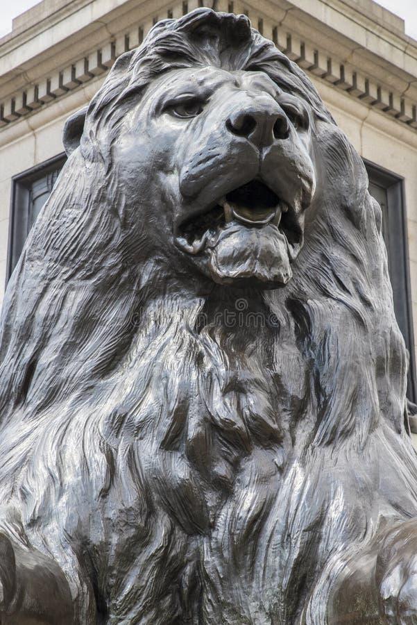 León de Trafalgar Square en Londres foto de archivo