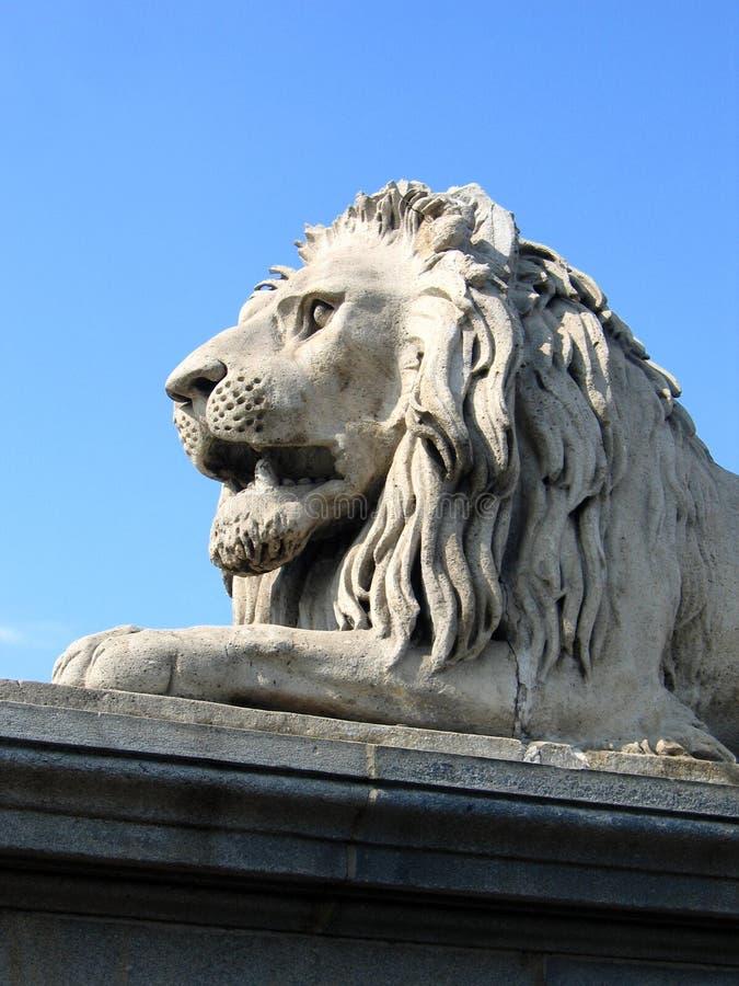 León del puente de cadena - Budapest, Hungría imágenes de archivo libres de regalías