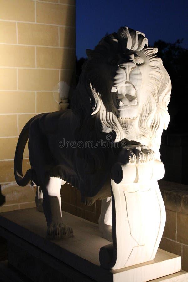 León melancólico foto de archivo