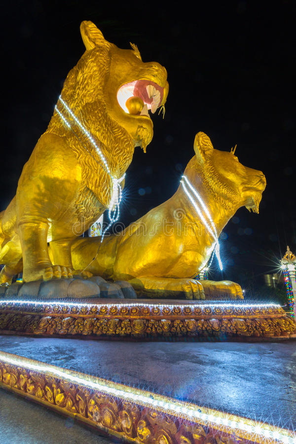 Leões dourados iluminados na noite, centro de Sihanoukville Camb foto de stock royalty free