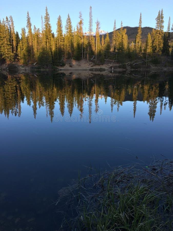 Leśniczy jeziora w stanu stanu Lasowym parku w Kolorado obrazy royalty free