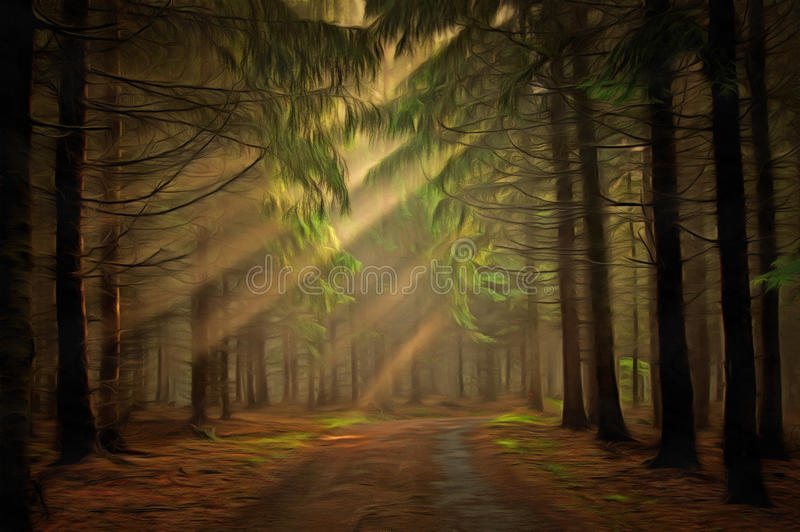 leśny światła słońca ilustracja wektor