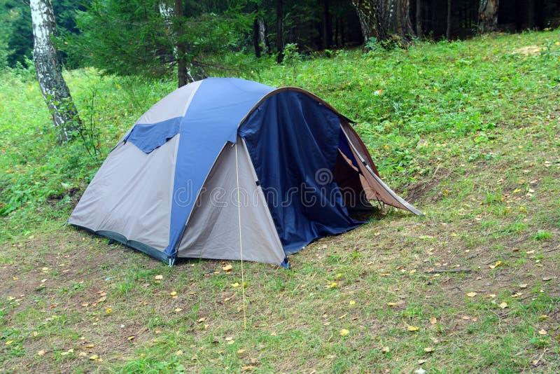leśny namiot zdjęcie royalty free