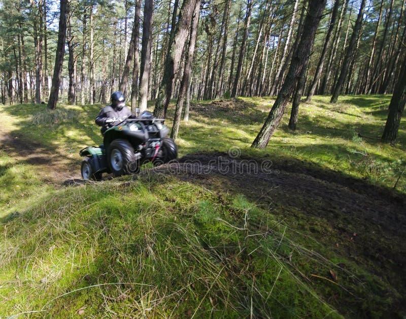 leśny przyspieszenia atv square fotografia stock