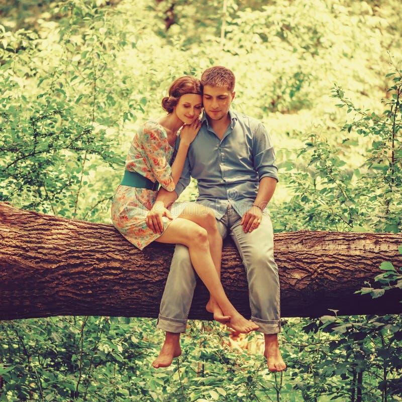 Le älska parsammanträde på träd fotografering för bildbyråer