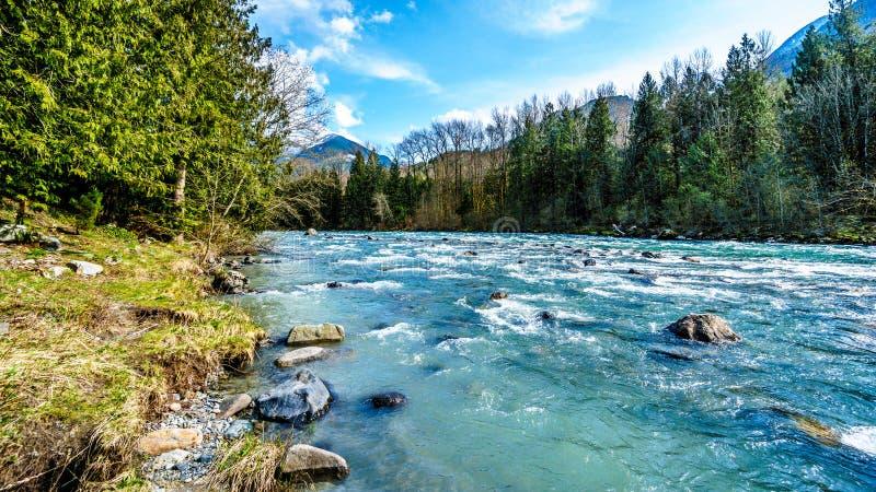 Le acque cristalline a flusso rapido del fiume di Chilliwack fotografia stock libera da diritti