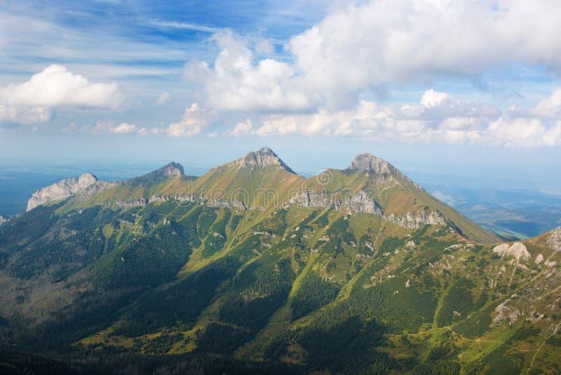 Le alte montagne di Belianske - di Tatras Tatry da Jahnaci alzano nella sera - picchi di Zdiarska Vidla e di Havran immagini stock libere da diritti