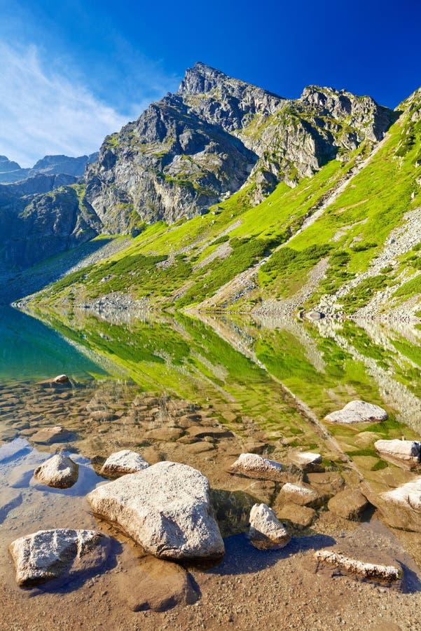 Le alte montagne di Tatra abbelliscono il lago Carpathians Polonia della natura fotografia stock libera da diritti