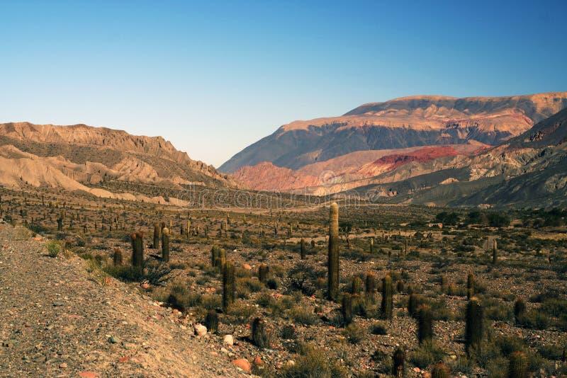 Le Ande nella provincia di Salta, Argentina fotografia stock