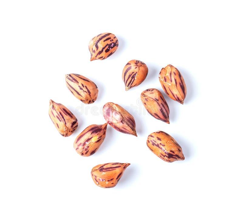 Le arachidi arrostite, nome tailandese è i fagioli della tigre-banda isolati su fondo bianco fotografie stock