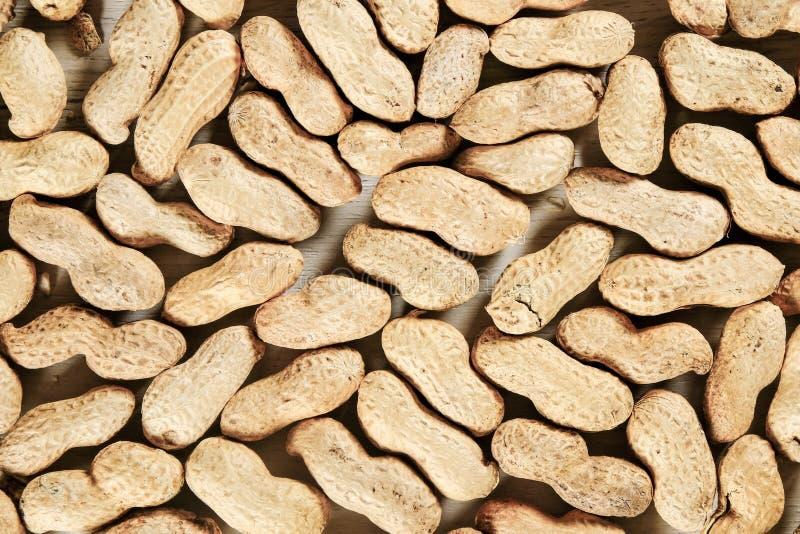 Le arachidi si chiudono su fondo su superficie di legno bianca fotografia stock