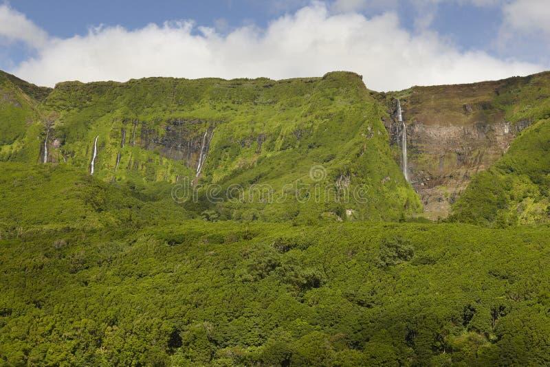 Le Azzorre abbelliscono con le cascate e le scogliere nell'isola del Flores Po fotografia stock