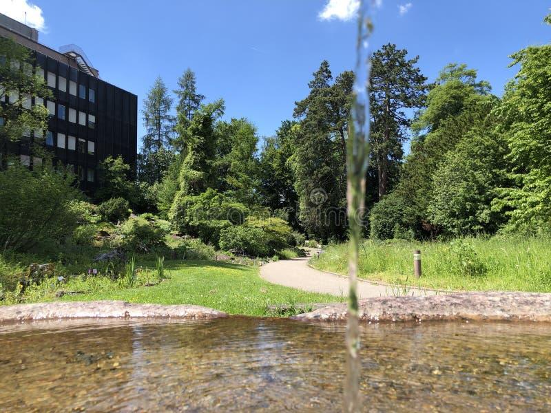 Le bâtiment de l'institut - jardin botanique de l'université du der Universitaet Zurich de Zurich ou de Botanischer Garten photo libre de droits